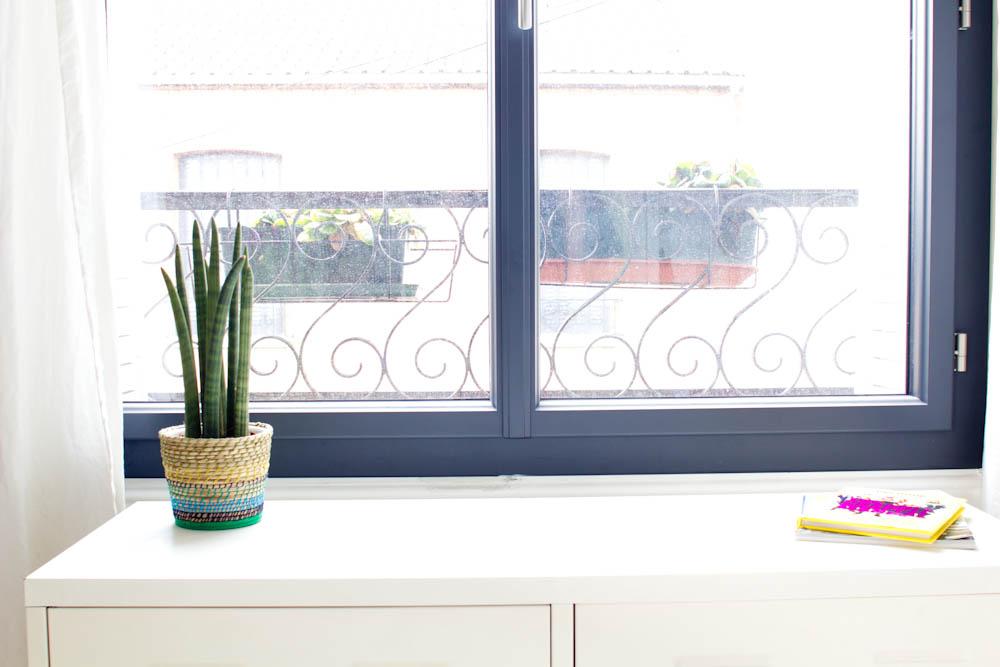Vert cerise - fenêtre et plantes