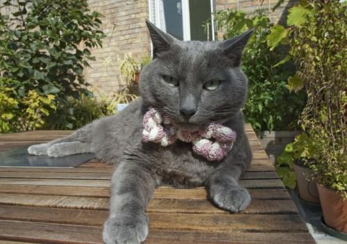 loomknit_cat_neck_tie